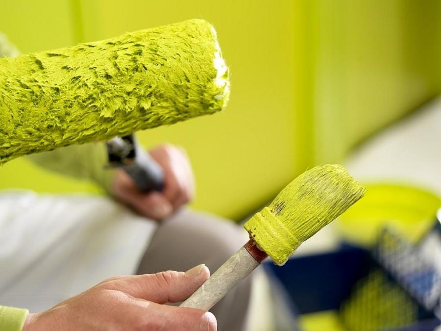 Советы эксперта: выбор краски для внутренних стен